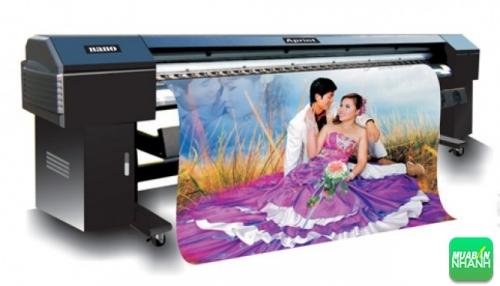 In phong nền hình cưới trên chất liệu PP in bằng máy in PP khổ lớn