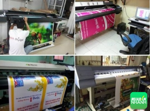 Hướng dẫn chọn mua máy in PP khổ lớn tại TPHCM